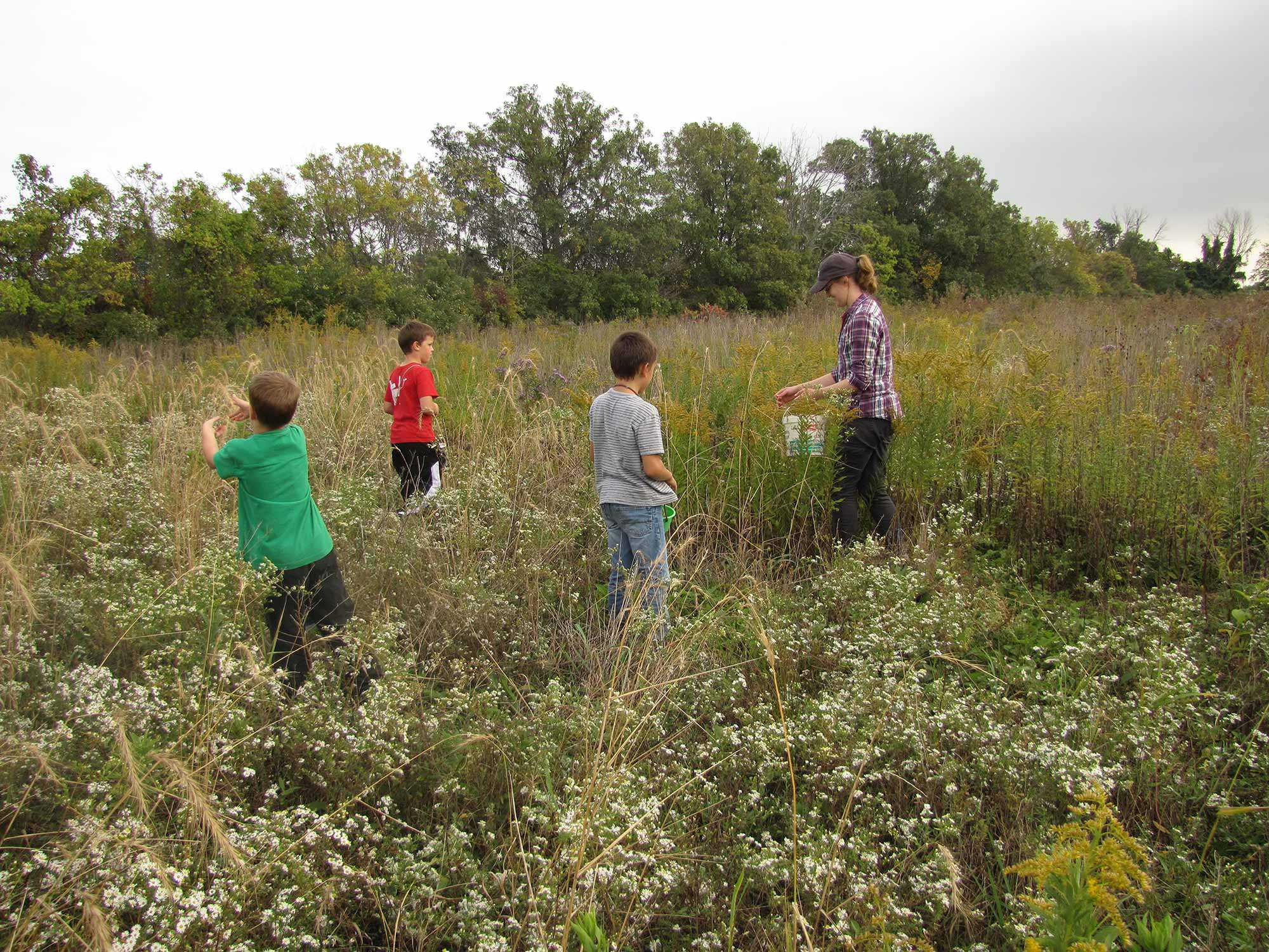 Children from Pelee Island Pubic School helping to collect seeds for restoration projects