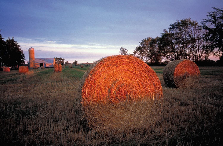 Bales of hay on a farm near Stratford. Photo © Ontario Tourism